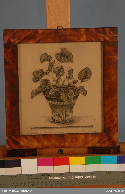 urne med blomst