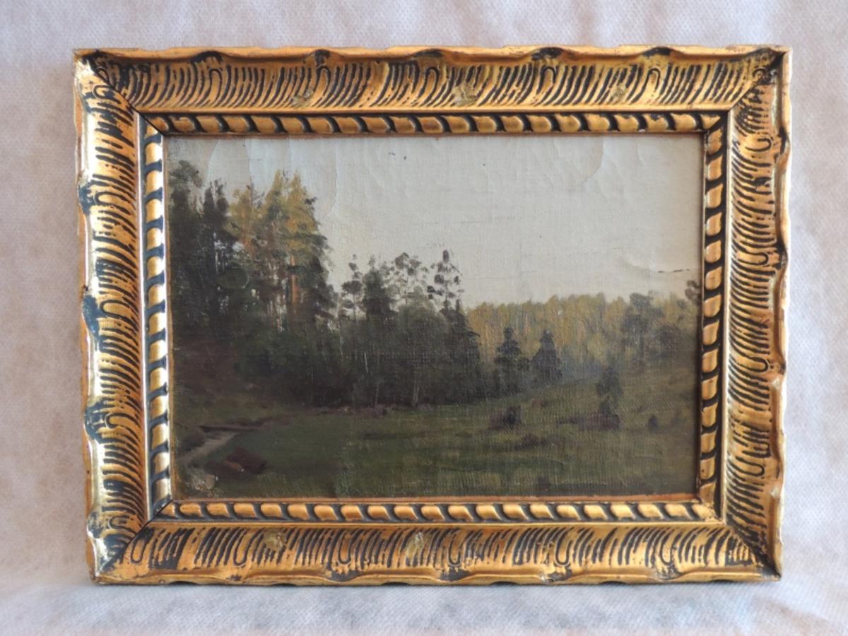 Eng og skog.