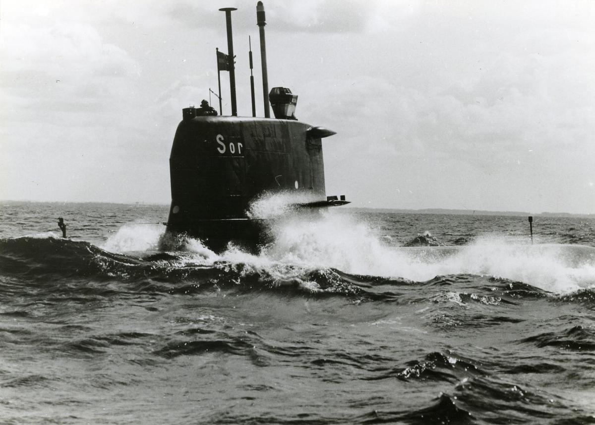 SJÖORMEN (1967)