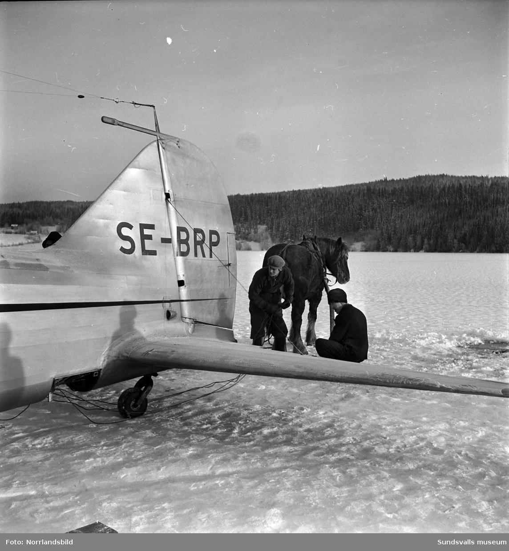 En måndagseftermiddag i början av december 1950 gjorde kapten Torwald Andersson en perfekt landning på Långsjöns is i Tuna med en last av färska kvällstidningar. Direkt efter landningen brast isen och det lilla planet blev liggande med vatten upp till propellrarna. Bärgningsarbetet blev besvärligt, ett par dagar efter incidenten lyckades man till slut få upp planet ur vattnet med hjälp av såväl modern teknik, i form av amerikanska luftkuddar som blåstes upp under vingarna, som gammeldags äkta hästkrafter. Det kvaddade planet fick sedan stå kvar på isen i väntan på att underlaget skulle bli så bärkraftigt att man kunde dra planet in till land för nedmontering och vidare transport till en verkstad.