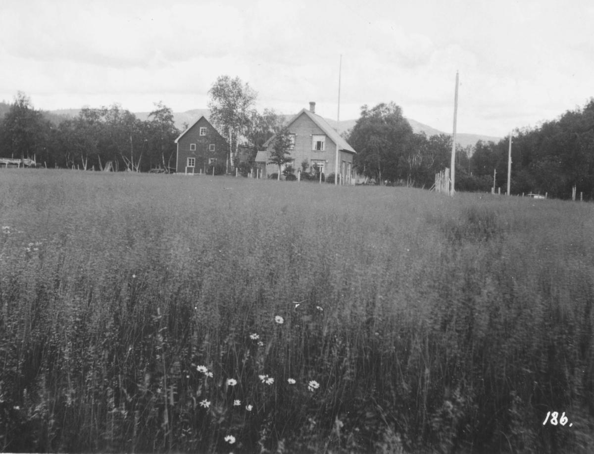 Stortingets Jordbrukskomite foretok en reise i Finnmark i 1935.  Kleppe var medlem av komiteen og ga bildene fra turen i gave til fylkesmann Gabrielsen etter krigen. Dette bildet viser Skjeragent gård i Alta, med frodige enger foran våningshuset.