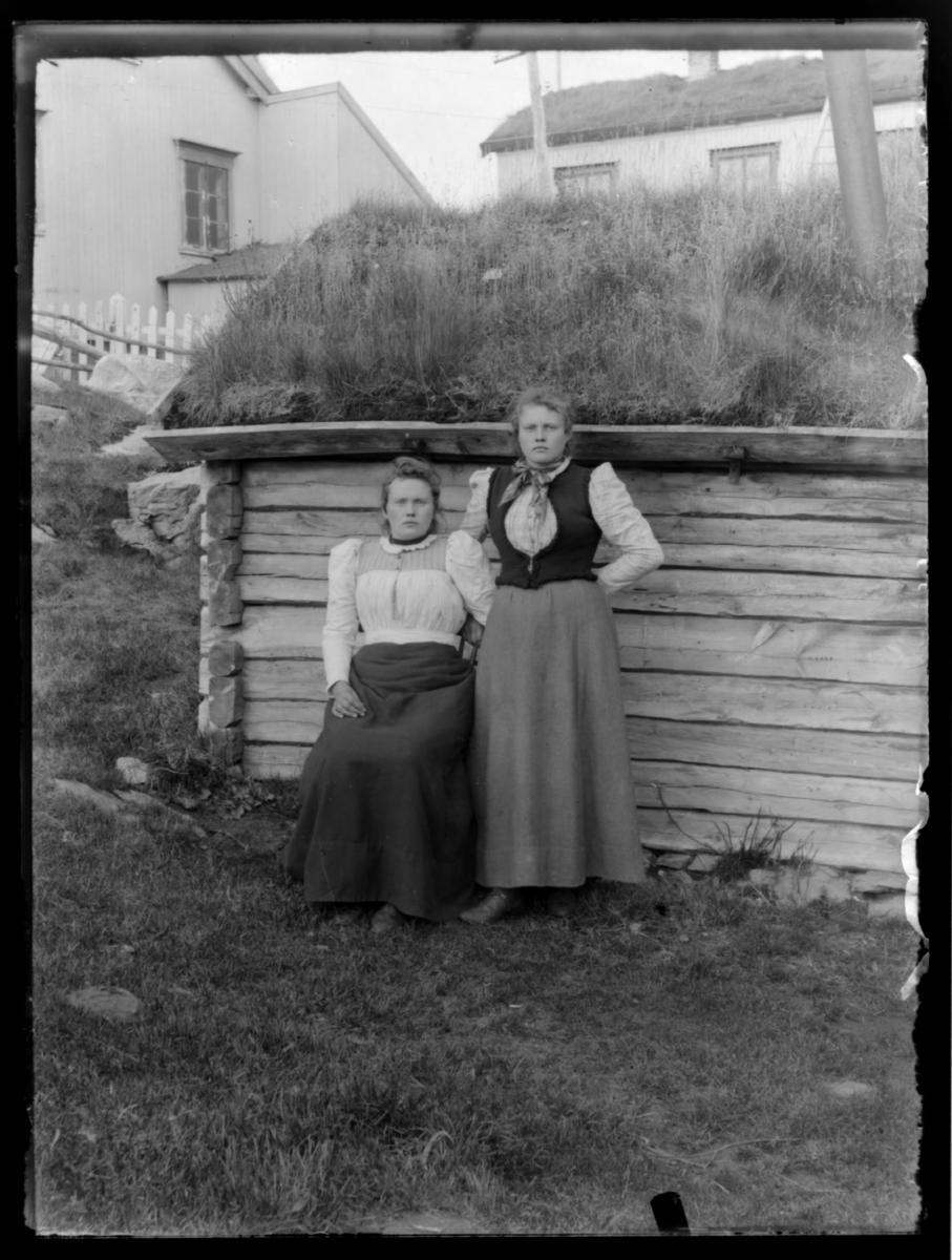 Søstrene Hansine og Albertine Johansdatter (Johansen) fotografert utenfor et tømmerhus