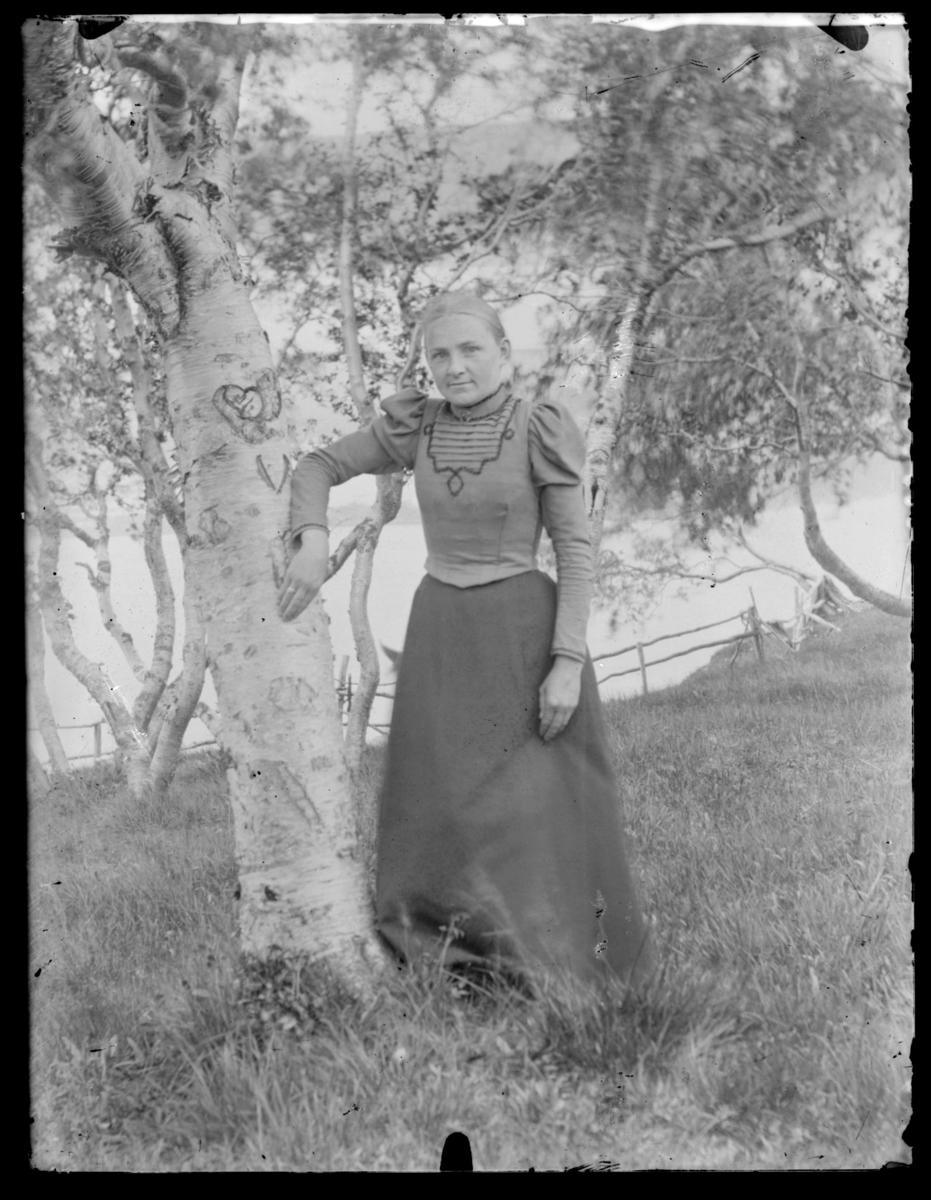 Vilhelmine Methi lent mot et bjørketre på Langnes i Tana