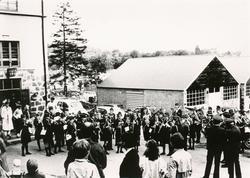 Diverse motiv fra Museumsdagen ved Sunnmøre Museum 1983. Nør