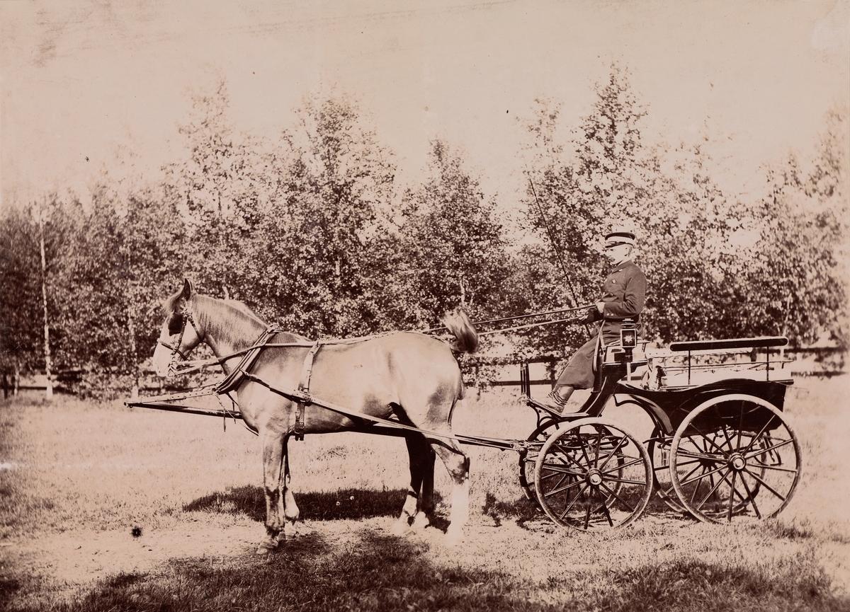 Kusk med to hester foran en lett vogn, trolig en slags Wagonette, stilt mot venstre.