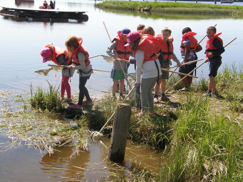 Foto av skoleelever som prøver å fange insekter i vann