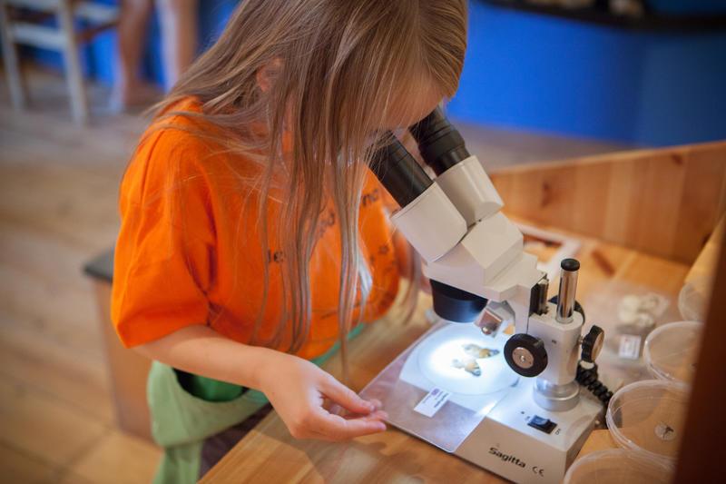 Foto av en jente som ser i lupe (Foto/Photo)