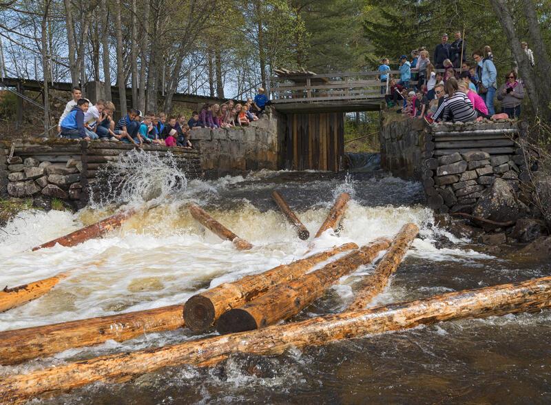 Demonstrasjon av tømmerfløting på Prestøya 16/5 2014