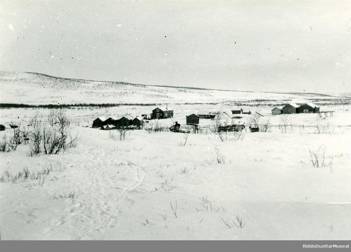 Šuoššjávrri duottarstohpu 1932. Šuoššjávrri fjellstue 1932.