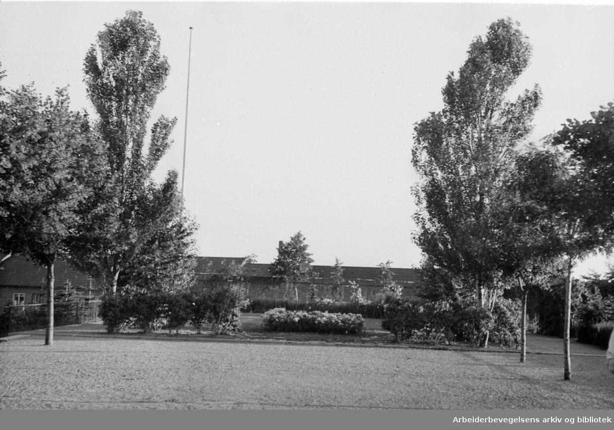 Hjemmets Kolonihage på Bjølsen.1946 - 1948