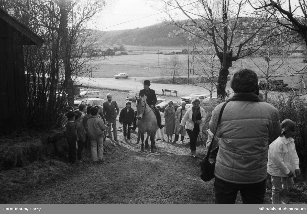 Almåsgården och Lindome hembygdsgille anordnar sommarkafé på Börjesgården i Hällesåker, år 1984. Philip Oscander och hans granna fjording anländer med budkavlen efter en tvåmilaritt från Vallda.  För mer information om bilden se under tilläggsinformation.