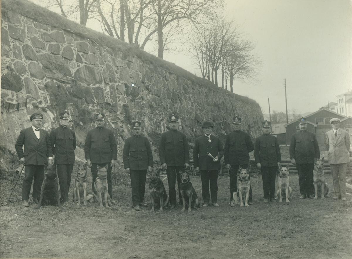 Oslo Politis Tjenestehundsklub opvisning på Kontraskjæret 2.5.1926