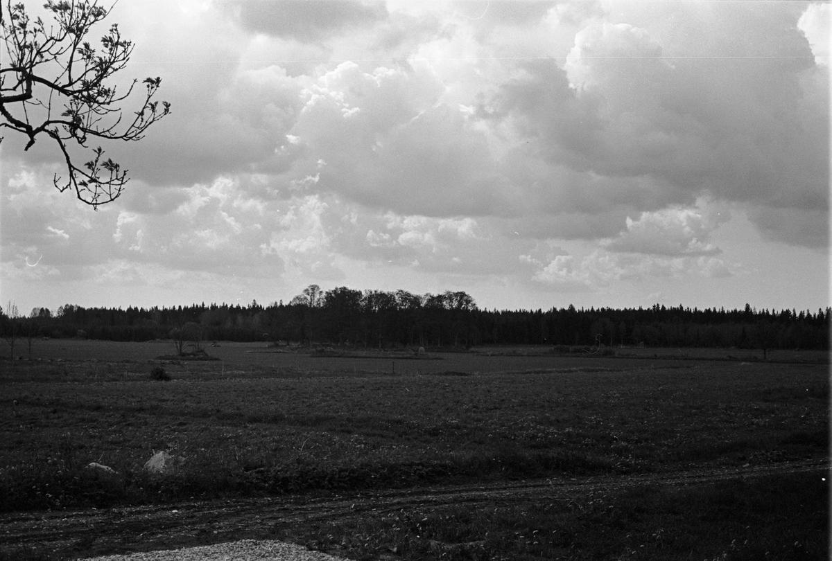 Odlingslandskap, Lydinge 1:1, Lydinge gård, Stavby socken, Uppland 1987