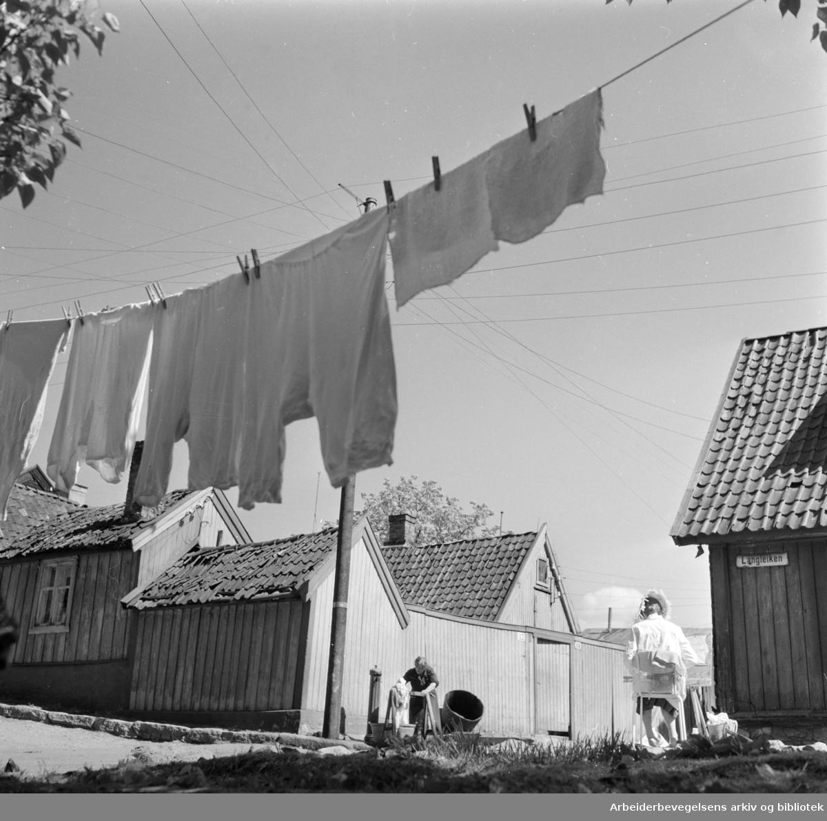 Enerhaugen.Mai 1959