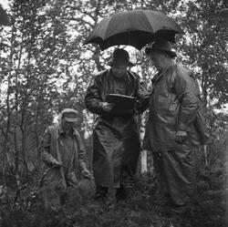 Från uppmätningen av fångstgropssystemet i regn. Westin, Joh