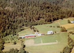 Flyfoto fra gården til Erling L. Meisingset, Rotås på Meisin