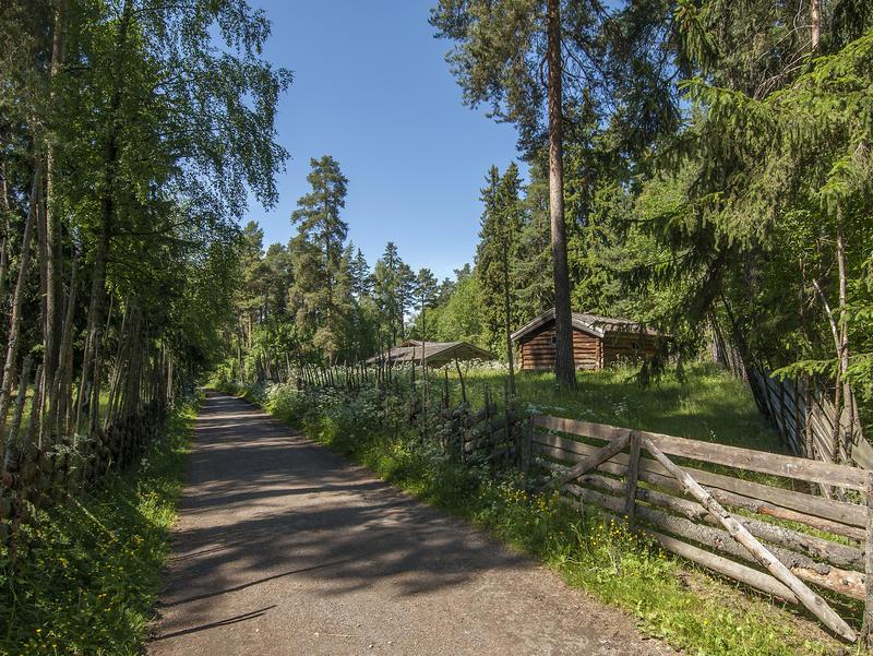 Grusveg med skog på begge sider og en liten setervoll med et par brune tømmerhus til høyre bak ei grind. (Foto/Photo)