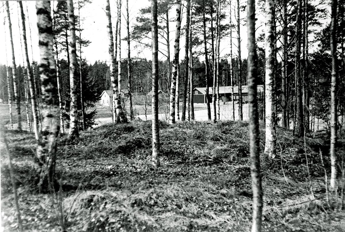 Nibblesbacke gravfält. Fotograf KJ Österberg.