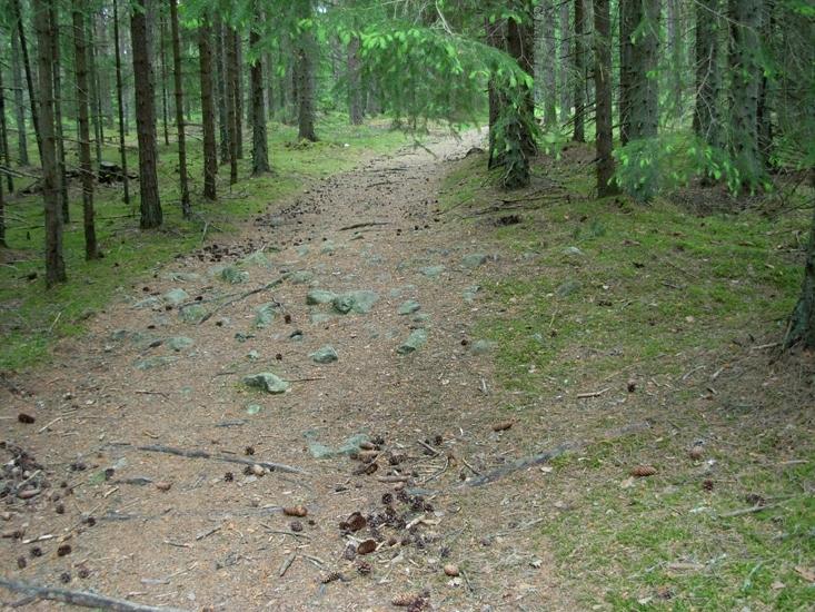 Röjningsröse Foto av röjningsröse i fossil åker.  Raä 591 b, 2010-06-07.