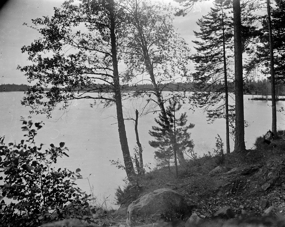 Vy från övre till nedre dammen i Gammelstilla, Torsåker.