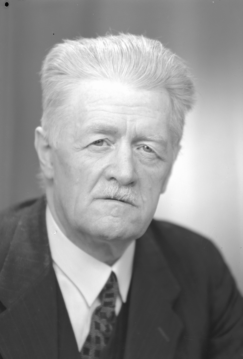 Redaktör Nils Sigfrid Norling, född 27 juni 1880 i Emislöv, Kristianstads län, död 24 augusti 1956. År 1910-1948 redaktör och utgivare av Arbetarbladet i Gävle. Tillhörde socialdemokratiska partiet, ordförande i arbetarkommun och satt i stadsfullmäktige. Riksdagsman från 1919. Nykterhetsman ledamot i styrelsen för Sveriges storloge I.O.G.T. Har bl.a. skrivit diktsamlingen Under röda fanor (1906), novellsamlingarna Människobarn (1910), Göingar och annat folk (1924) samt översatt Alexsandersen (1924) och Jörgensfästen (1924) av Harald Bergstedt.