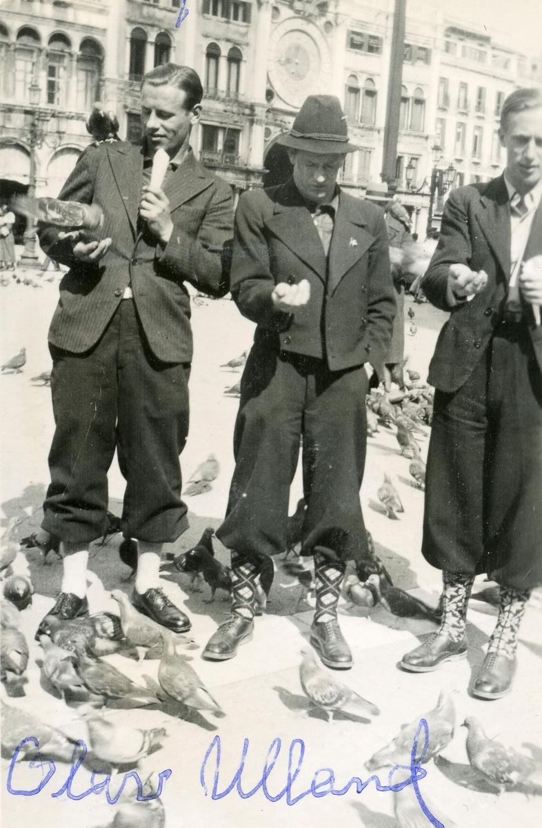 Norwegian skiers feeding pigeons