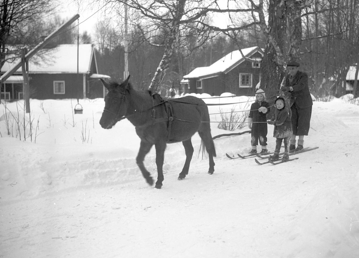 Vinter i Furuvik.