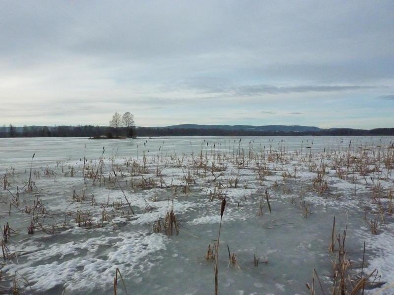 Vinterstemning i Monsrudvika