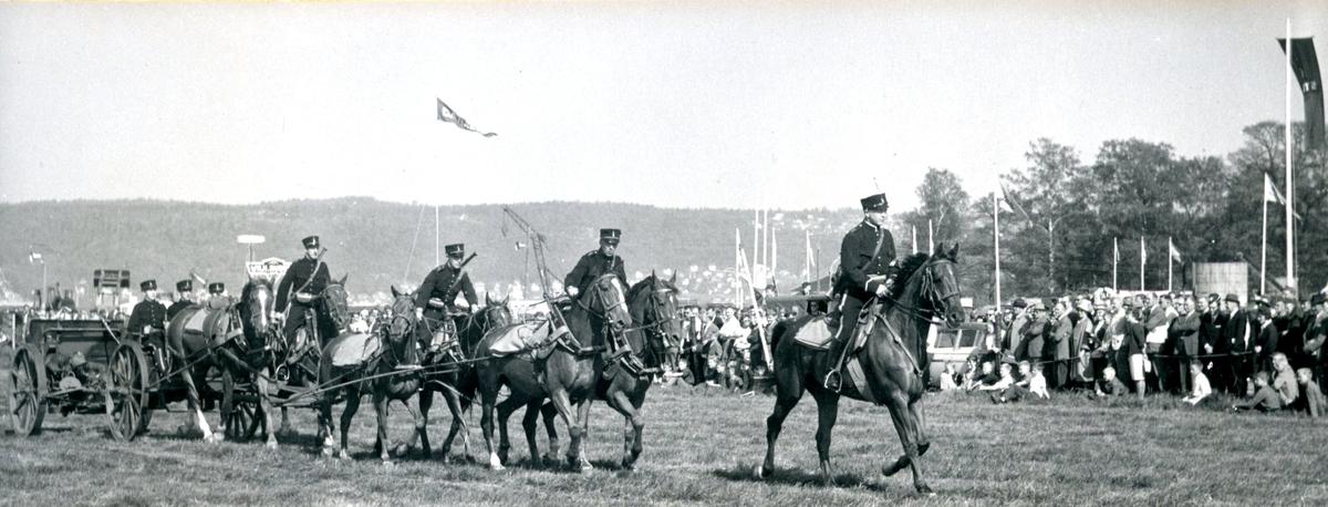 Kanon m/1902. 7,5 cm. Hästanspänd pjäs, RILA (Rikslantbruksmötet)  A 6.