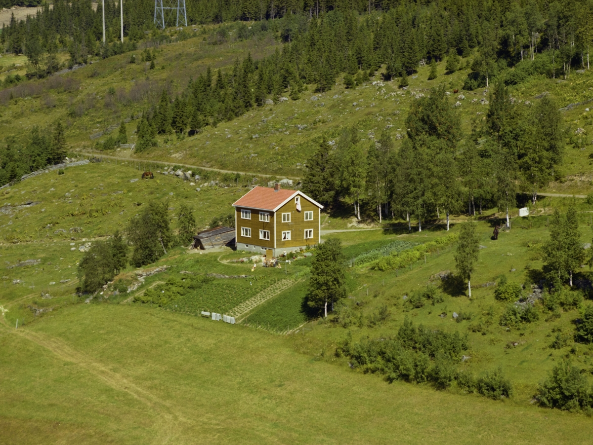 Borgheim. Kulturlandskap med rød-brunt bolighus, grønsakhage, åker,   utmark, skog.