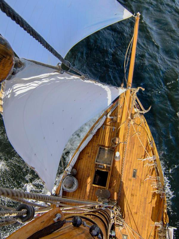 RS1 Colin Archer sett fra masta, utsikt over framdelen av dekket, to seil og litt av sjøen. (Foto/Photo)