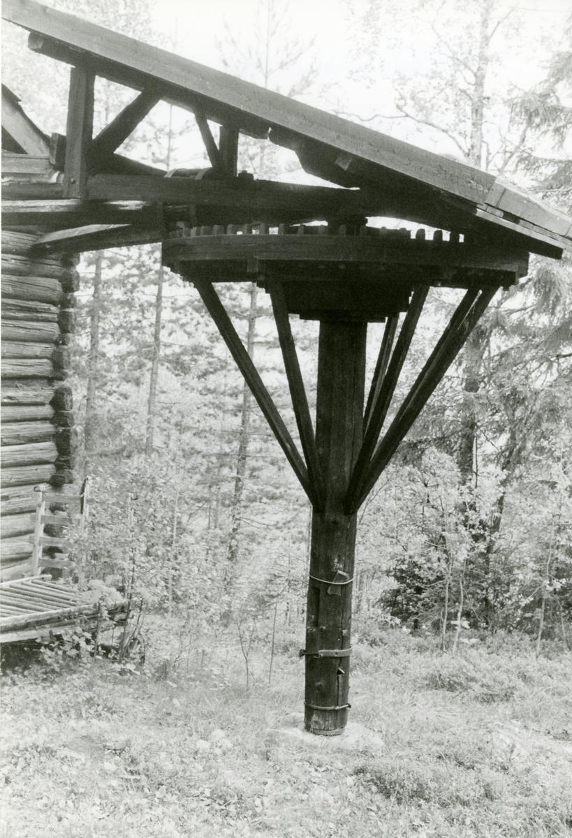 Hestevandring på Bautahugen samlinger, Sør-Aurdal.