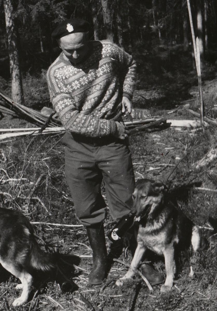 Hundefører og politihund i felt