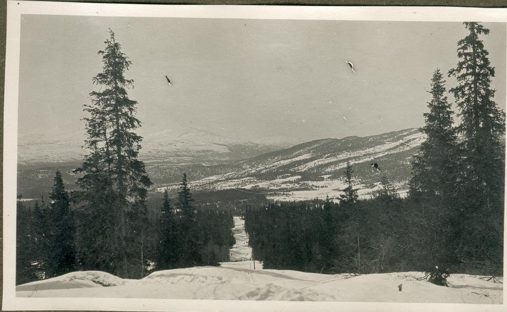 Skogkledt landskap med fjell. Vinter. Kraftgate/kraftlinje som skjærer gjennom landskapet.