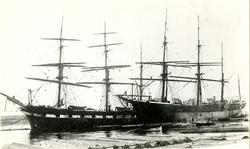 Bark 'Arizona' (ex. britisk s.n.) (b.1869, T. E. Willedge &
