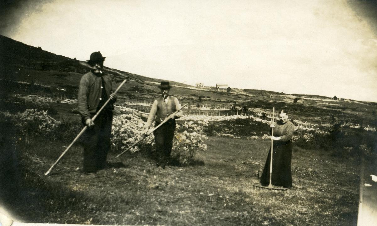 Ellingslia seter på Blomstølen. To menn og en kvinne raker.