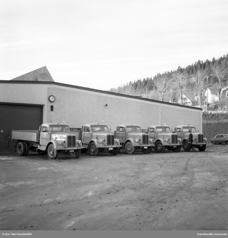 Fem Scania lastbilar står uppradade utanför Bil & Buss, för leverans till Fränsta.