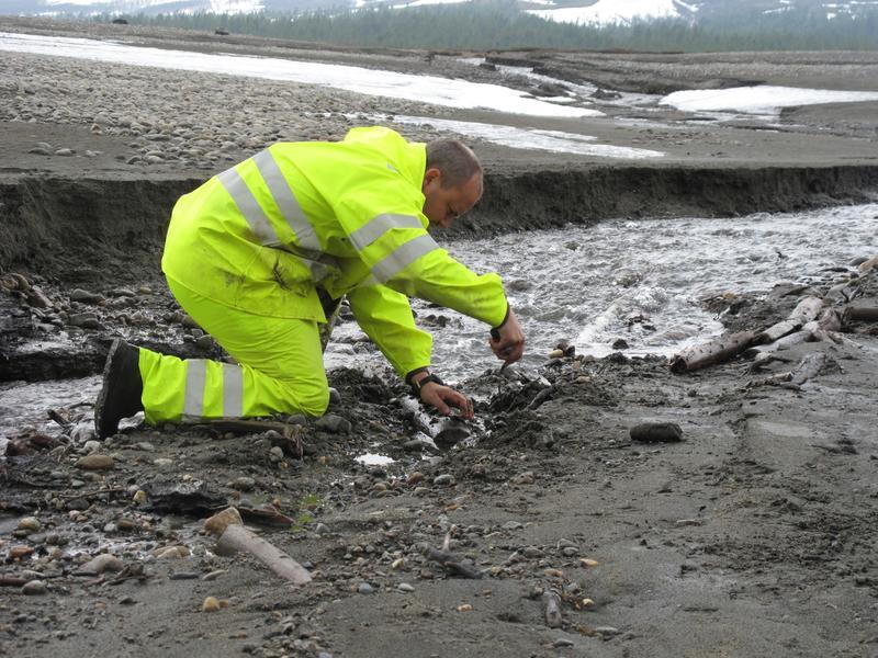 Arkeolog kledd i gult undersøker et mulig fiskeanlegg ved Tesse i Oppland fylke.