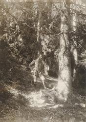 John Bauer har stannat vid en källa på sin promenad i skogen