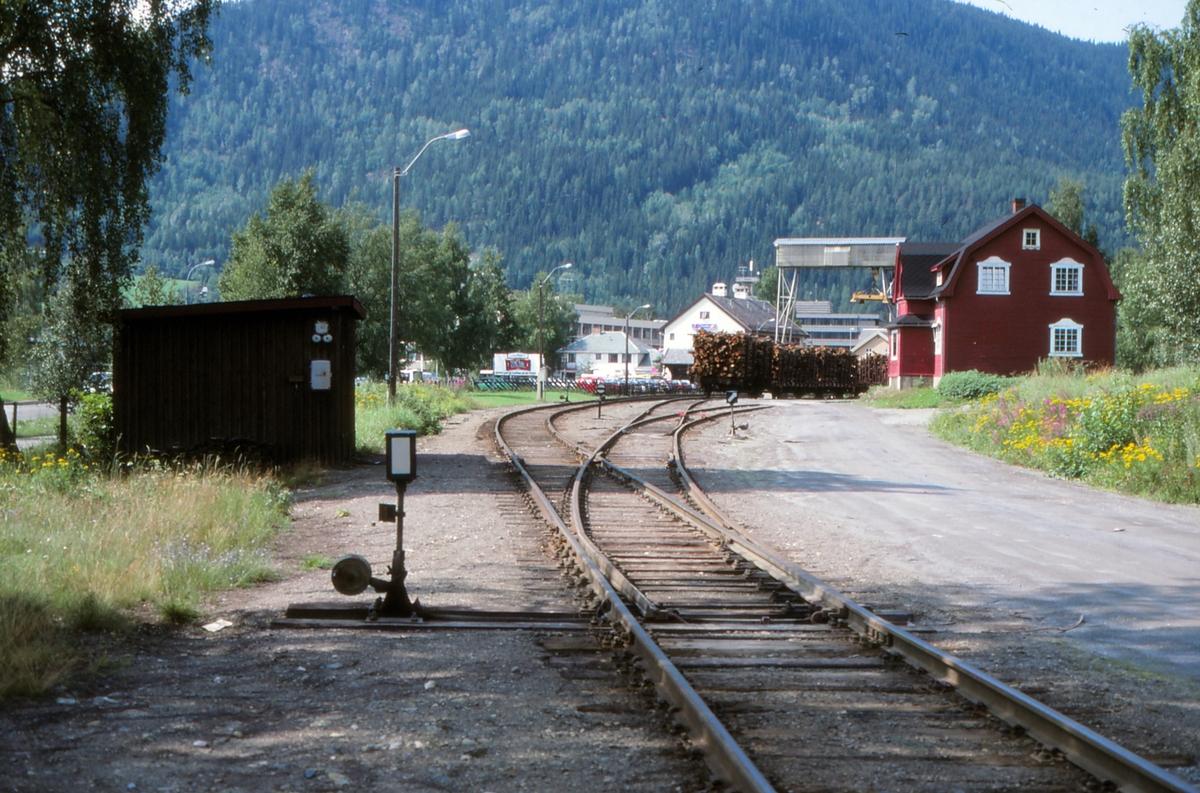 Innkjørsporvekselen på Fagernes stasjon.