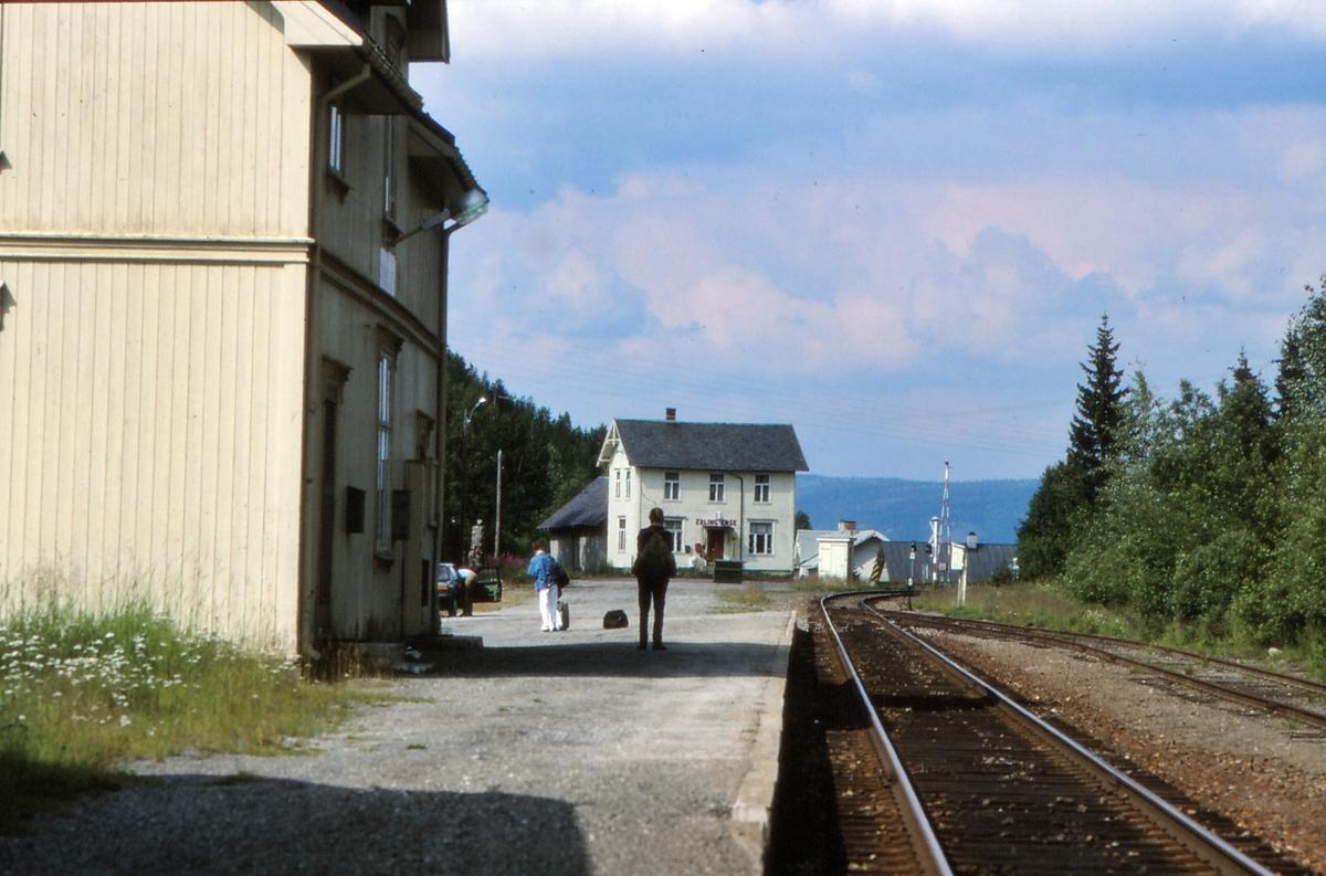Stasjonsidyll. Reisende venter på toget i Tonsåsen stasjon.