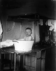 Tore Alinder badar i balja på bord i köket, Sävasta, Altuna