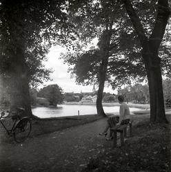 Einar Jagerwalls första bok, sid. 61: Nykvarnsparken, en täm