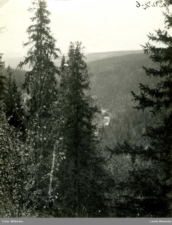 Dokkas løp sett fra nord