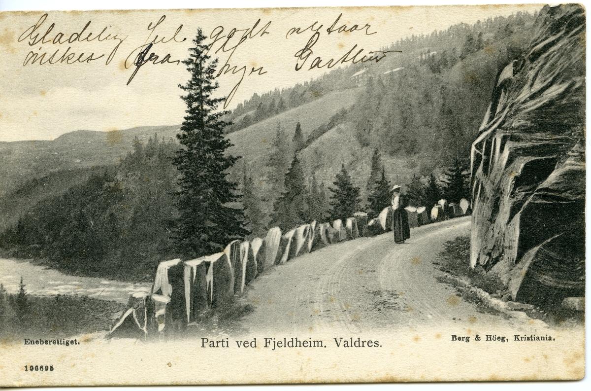 Postkort med motiv fra Sør-Aurdal. Nord for Fjellheim, med nedre Jukam i bakgrunnen.