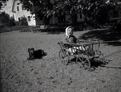 En hund och ett barn i en liten vagn på Tuna gård.