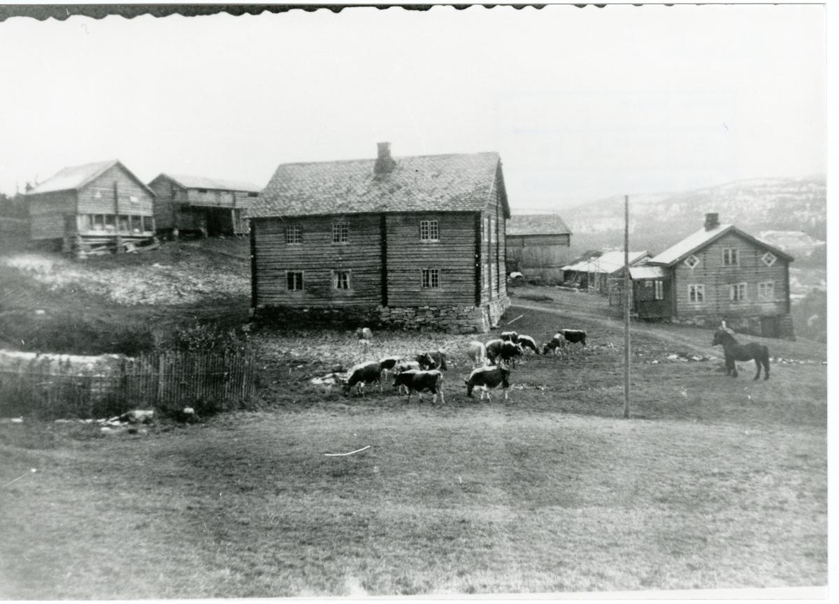 Skaro, Sør-Aurdal.