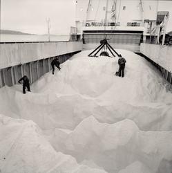 Arbeidere måker salt i et fartøy ved kaia til Kristian Holst