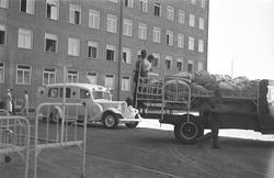 KLMF.Gudbrand00185