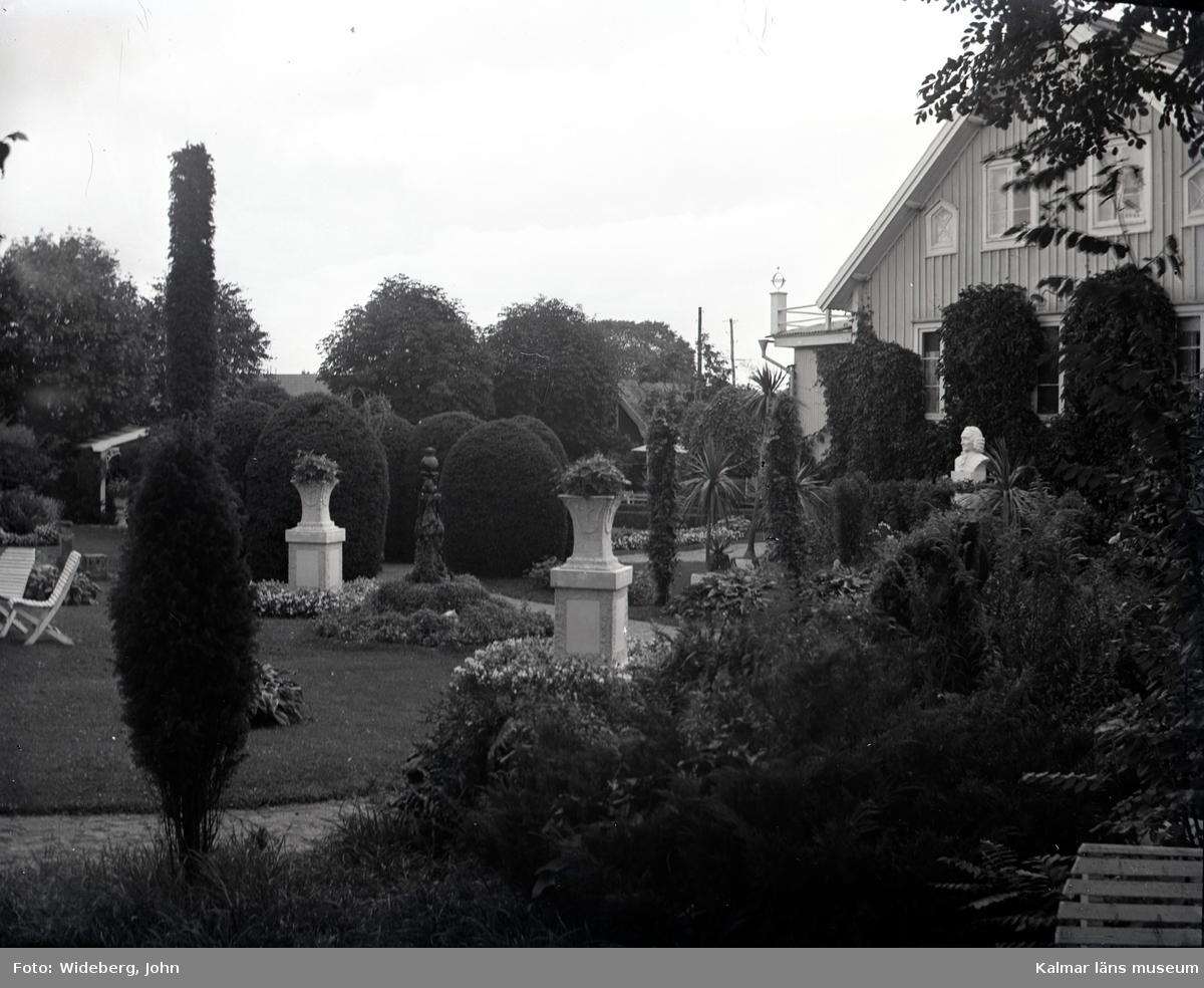 Motiv från Widebergs trädgård.